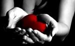 serce-na-dłoni